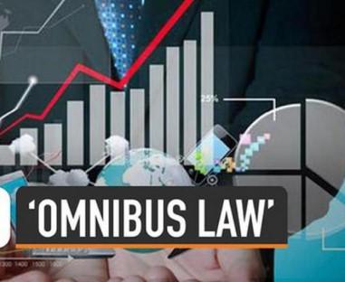 RUU Omnibus Law Atur Pembentukan SWF