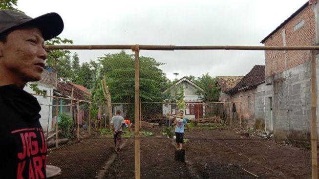 Jaga Ketahanan Pangan, Warga Desa di Bantul Bercocok Tanam di Lahan Kosong