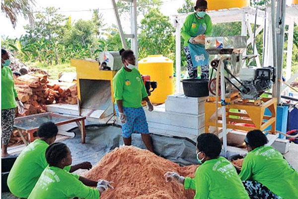 UGM Dukung Kementan Perkuat Diversifikasi Pangan Lokal