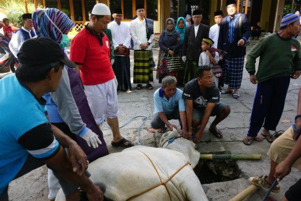 MUI Minta Umat Islam Terapkan Protokol Kesehatan saat Iduladha