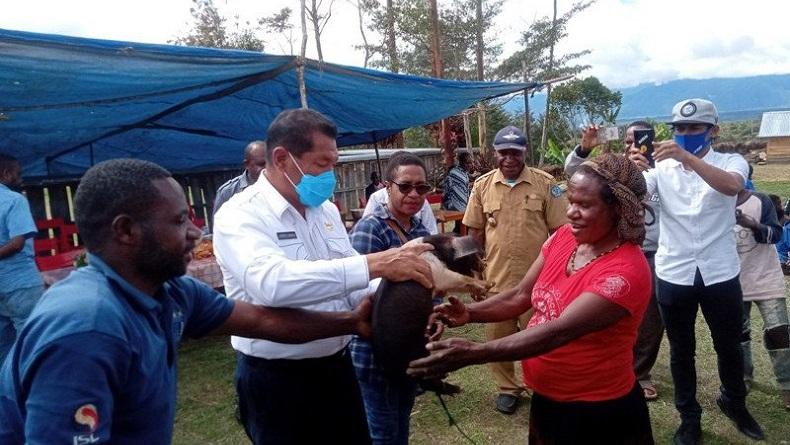 Dukung Kelanjutan Otsus, Bupati Jayawijaya Klaim Pembangunan Libatkan Warga