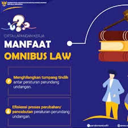 Akademisi UI Paparkan Manfaat Omnibus Law RUU Cipta Kerja