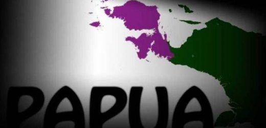 Dukung Otonomi Khusus Jilid 2 untuk Memajukan Teknologi Informasi di Papua
