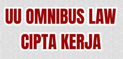 UU Cipta Kerja Membangun Ekonomi Indonesia di Forum Dunia