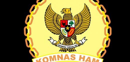 Komnas HAM Nyatakan Anggota FPI Memiliki Senjata Api