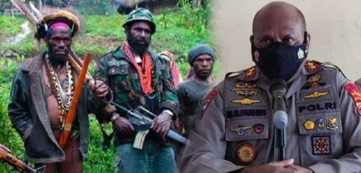 Aksi Kejam KKB Papua Tembak Mati Guru dan Bakar 3 SD Buat Geram DPR/MPR, Minta Polri Tambah Personil