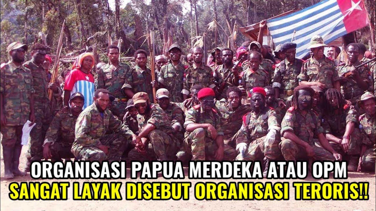 Kelompok Teroris di Papua Harus Ditindak Tegas