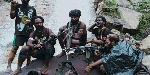 Pembunuhan Pelajar Asli Papua oleh OPM Dianggap Pelanggaran HAM Kelompok Rentan