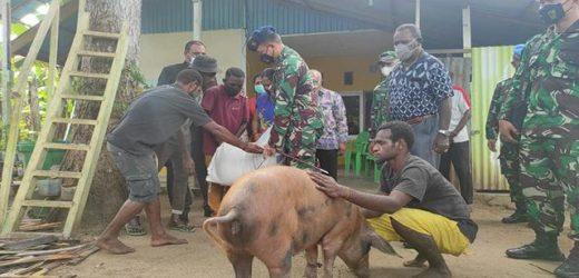 Sambangi Rumah Steven, Komandan Lanud TNI AU Merauke Berikan Seekor Babi Dan Beras